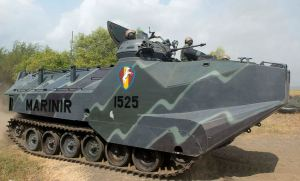 Indonesian AAV